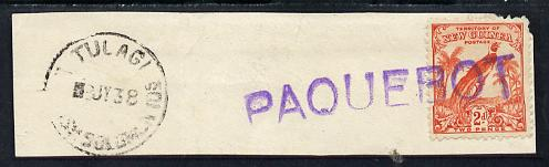 New Guinea used in Solomon Islands - 2d adhesive on piece postmarked Tulagi 8 JY 38, stamp tied by straight line PAQUEBOT handstamp