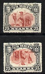 Nyassa Company 1901 Dromedaries 75r with inverted centre plus normal both mounted mint, SG 34a