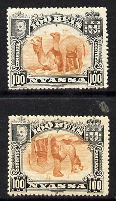 Nyassa Company 1901 Dromedaries 100r with inverted centre plus normal both mounted mint, SG 36a
