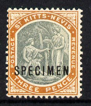 St Kitts-Nevis 1903 Crown CA Medicinal Spring 3d opt