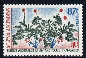 French Southern & Antarctic Territories 1973 Plants - Acaena ascendens 87f unmounted mint SG 84