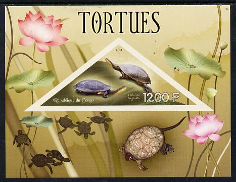 Congo 2014 Turtles imperf s/sheet containing one triangular-shaped value unmounted mint