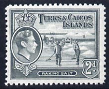 Turks & Caicos Islands 1938 KG6 Raking Salt 2d grey unmounted mint, SG 198*