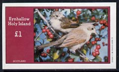 Eynhallow 1982 Birds #16 imperf souvenir sheet (�1 value) unmounted mint