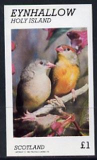Eynhallow 1982 Love Birds imperf souvenir sheet (�1 value) unmounted mint