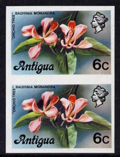 Antigua 1976 Orchid Tree 6c (without imprint) unmounted mint imperforate pair (as SG 475A)
