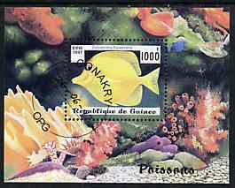 Guinea - Conakry 1997 Fish m/sheet cto used