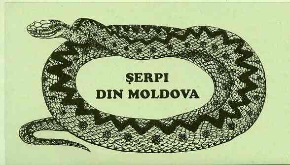 Booklet - Moldova 1993 WWF Protected Animals (Snakes) 104r booklet complete and pristine (contains 2 complete sets)