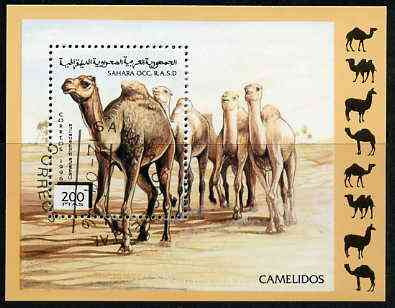 Sahara Republic 1996 Camels perf set of 6 very fine cto used*