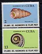 Cuba 1974 the two Shell values from Felipe Poey (Naturalist) set unmounted mint, SG 2126 & 2129