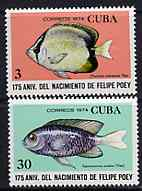 Cuba 1974 the two Fish values from Felipe Poey (Naturalist) set unmounted mint, SG 2127 & 2130