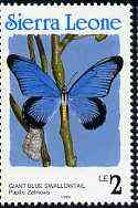 Sierra Leone 1991 Butterflies 2L (Papilio zalmoxis) with Country name in blue P14 unmounted mint, SG 1662 (blocks available)