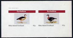 Eynhallow 1982 Water Birds imperf  sheetlet containing complete set of 2 values (40p & 60p) unmounted mint