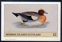 Bernera 1982 Ducks #4 imperf  deluxe sheet (�2 value) unmounted mint