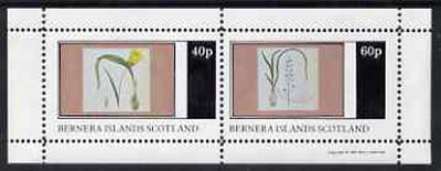 Bernera 1981 Flowers #04 perf  set of 2 values (40p & 60p) unmounted mint