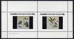 Eynhallow 1982 Fruit (Black currant & Strawberry) perf  set of 2 values (40p & 60p) unmounted mint
