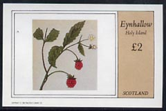 Eynhallow 1982 Fruit (Raspberry) imperf  deluxe sheet (�2 value) unmounted mint