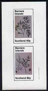 Bernera 1982 Plants #1 imperf set of 2 values (40p & 60p) unmounted mint