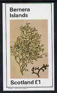Bernera 1982 Plants #1 imperf souvenir sheet (�1 value) unmounted mint