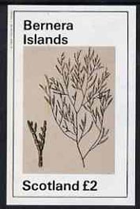 Bernera 1982 Plants #1 imperf deluxe sheet (�2 value) unmounted mint