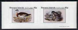 Bernera 1981 Ducks #3 imperf  set of 2 values (40p & 60p) unmounted mint