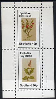 Eynhallow 1982 Plants (Winter Rocket & Savory) perf  set of 2 values (40p & 60p) unmounted mint