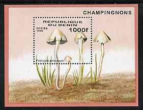 Benin 1996 Mushrooms m/sheet (1000f value) unmounted mint Mi BL 22