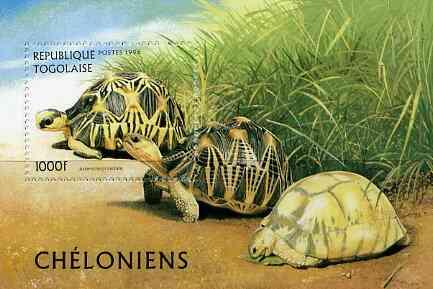 Togo 1996 Turtles unmounted mint m/sheet (1000f) Mi BL 401
