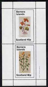 Bernera 1982 Violets (Scarlet V & Yellow V) perf set of 2 values (40p & 60p) unmounted mint