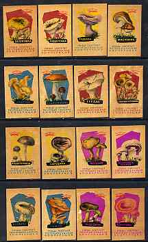 Match Box Labels - complete set of 16 Fungi (peach coloured background) very fine unused condition (Russian)