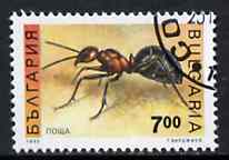 Bulgaria 1992 Ant 7L from Insects set of 8 very fine cds used, SG 3957*
