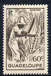 Guadeloupe 1947 Cutting Sugar Cane 60c brown unmounted mint, SG 214*