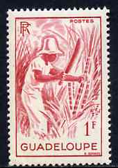 Guadeloupe 1947 Cutting Sugar Cane 1f red unmounted mint, SG 215*