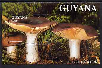 Guyana 1988 Mushrooms $360 m/sheet (Russula integra) very fine cto used