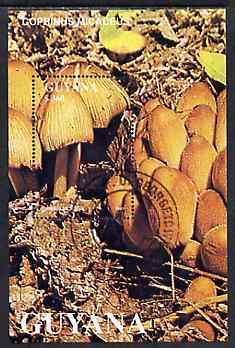 Guyana 1988 Mushrooms $360 m/sheet (Coprinus micaceus) very fine cto used
