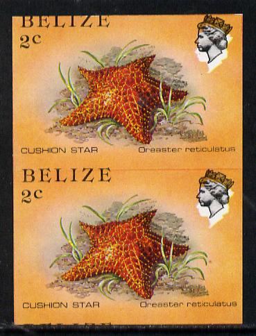 Belize 1984-88 Cushion Star 2c def in unmounted mint imperf pair showing superb 2mm shift of black (as SG 767) very fine double variety