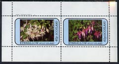 Eynhallow 1982 Flowers #08 (Fuschias) perf  set of 2 values (40p & 60p) unmounted mint
