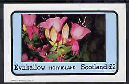 Eynhallow 1982 Flowers #08 (Fuschias) imperf  deluxe sheet (�2 value) unmounted mint