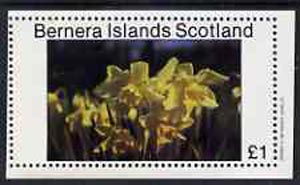 Bernera 1982 Flowers #07 imperf  souvenir sheet (�1 value) unmounted mint