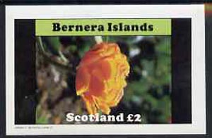 Bernera 1982 Flowers #08 imperf  deluxe sheet (�2 value) unmounted mint