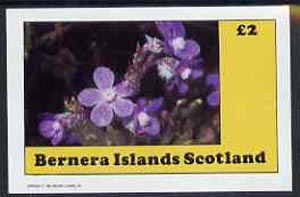 Bernera 1982 Flowers #10 imperf  deluxe sheet (�2 value) unmounted mint
