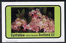 Eynhallow 1982 Flowers #09 imperf  deluxe sheet (�2 value) unmounted mint