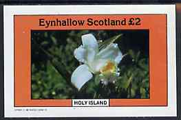 Eynhallow 1982 Flowers #10 imperf  deluxe sheet (�2 value) unmounted mint