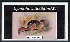 Eynhallow 1982 Rodents imperf souvenir sheet (�1 value) unmounted mint