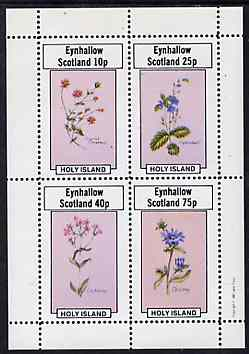 Eynhallow 1982 Flowers #11 perf  set of 4 values (Scarlet Pimpernel, Speedwell, etc) unmounted mint