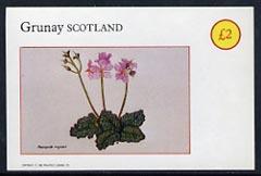 Grunay 1982 Flowers #01 imperf deluxe sheet (�2 value Ramonda Myconi) unmounted mint