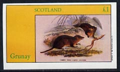 Grunay 1982 Rodents (Opossum) imperf  souvenir sheet (�1 value) unmounted mint