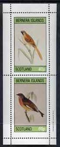 Bernera 1981 Birds #01 perf  set of 2 values complete (40p & 60p) unmounted mint