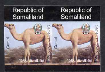 Somaliland 1997 Camel 1,500 SL (from Animal def set) unmounted mint imperf pair