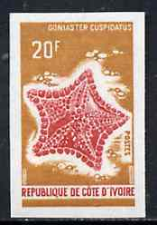 Ivory Coast 1971 Goniaster cuspidatus 20f imperf from limited printing, unmounted mint as SG 358